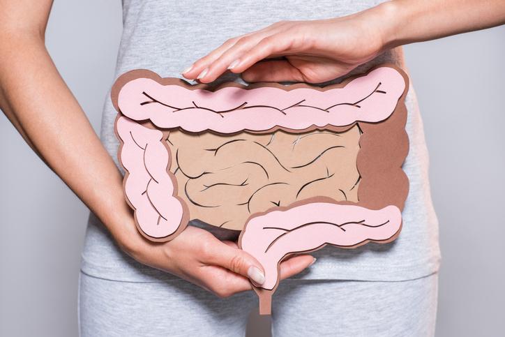 Eine Frau hält sich eine schematische Darstellung des Darms vor den Bauch.