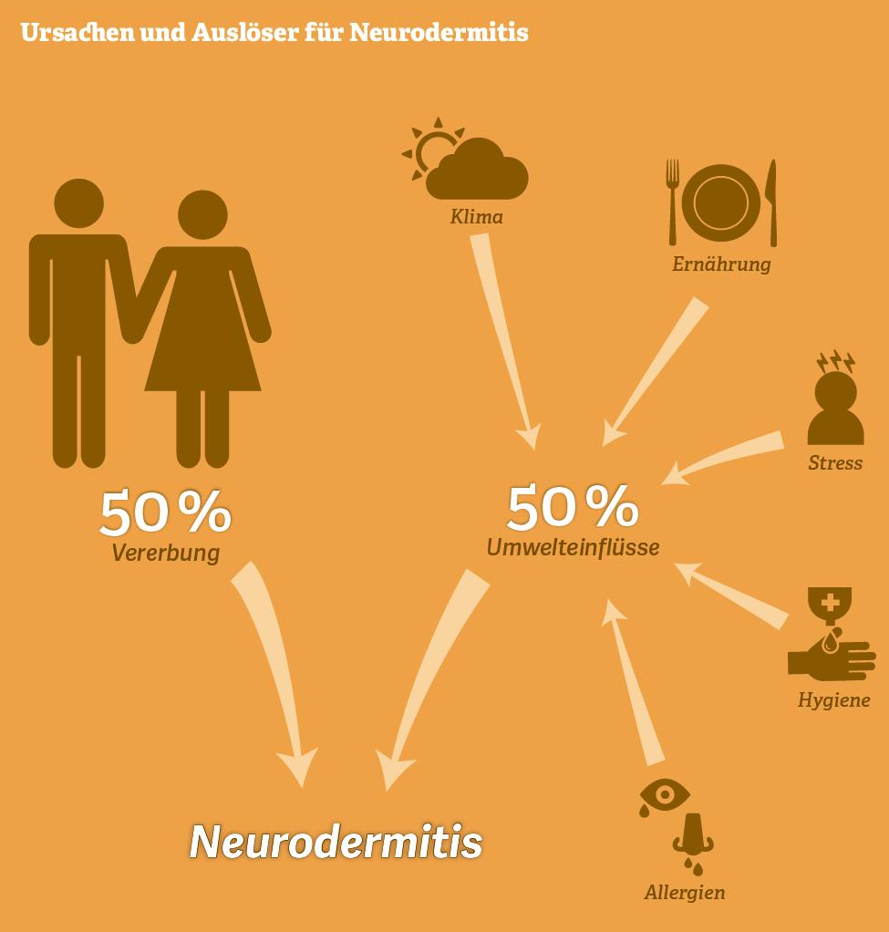 Grafik: Ursachen und Auslöser für Neurodermitis